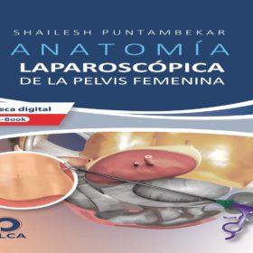 Anatomía Laparoscópica de la Pelvis Femenina – Puntabekar